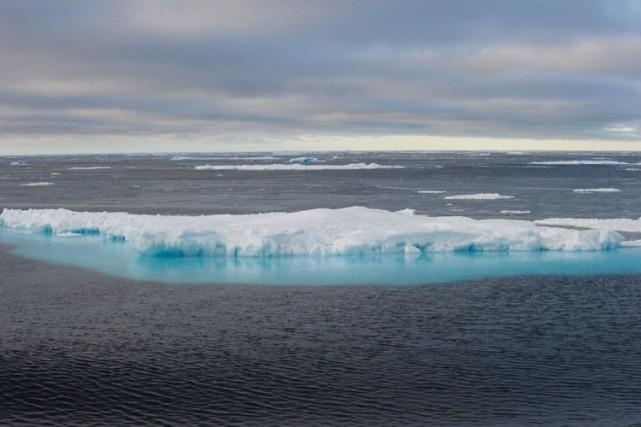 La superficie des glaces dans l'océan arctique a... (PHOTO AFP)