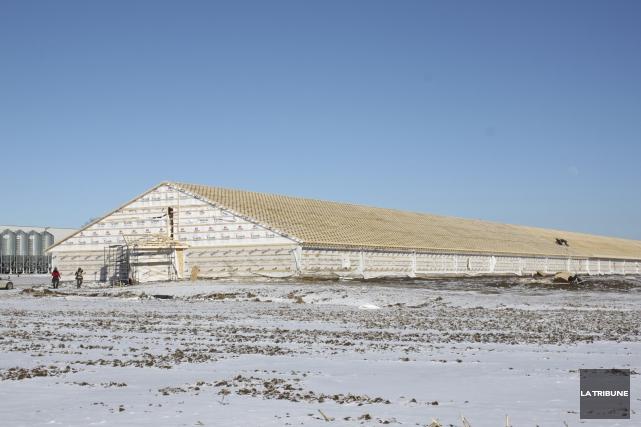 Le bâtiment de production des Canards du Lac... (La Tribune, Catherine Montambeault)
