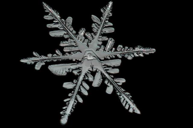 Les flocons de neige ont la réputation d'être... (WikiCommons)