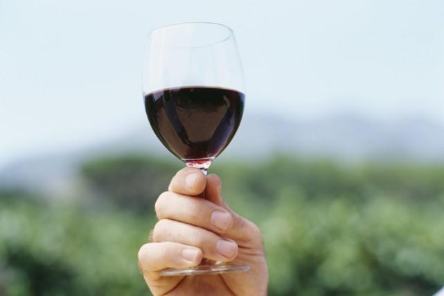 Les producteurs de vins du Pays d'Oc du Languedoc-Roussillon dénoncent une... (Photo archives Photos.com)
