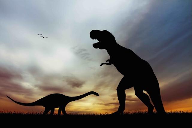 La «6e extinction» serait une extinction de masse... (123RF/Rossella Apostoli)