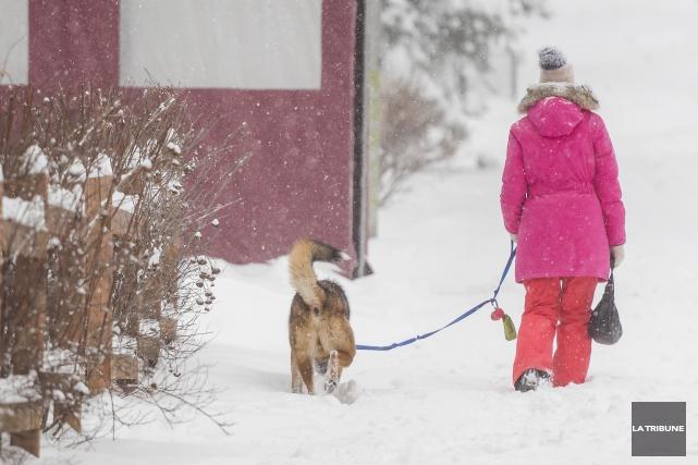 La semaine de relâche sera enneigée au Québec avec l'arrivée prochaine d'une... (Archives La Tribune)