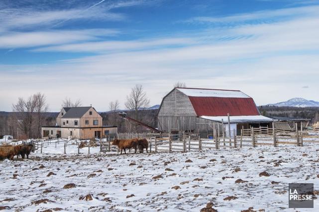 La ferme Au pied levé, à Magog, dans... (PHOTO HUGO-SÉBASTIEN AUBERT, LA PRESSE)