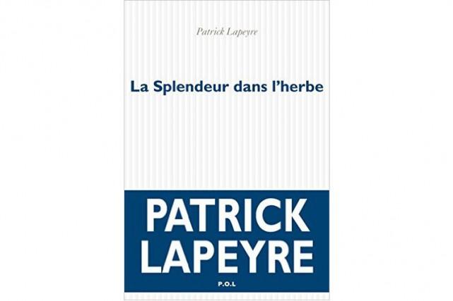 Si ce n'était la plume poétique et onirique de Patrick Lapeyre, il y aurait peu...