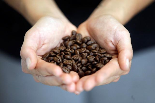 La caféine stimule le système nerveux central et... (PHOTO RICK BOWMER, ARCHIVES AP)
