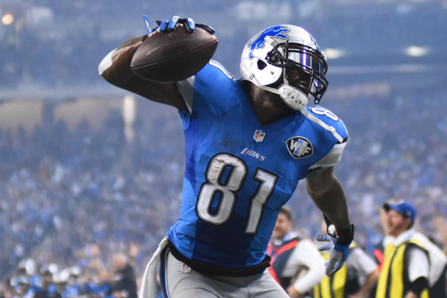 Calvin Johnson... (Photo Tim Fuller, archives USA Today)