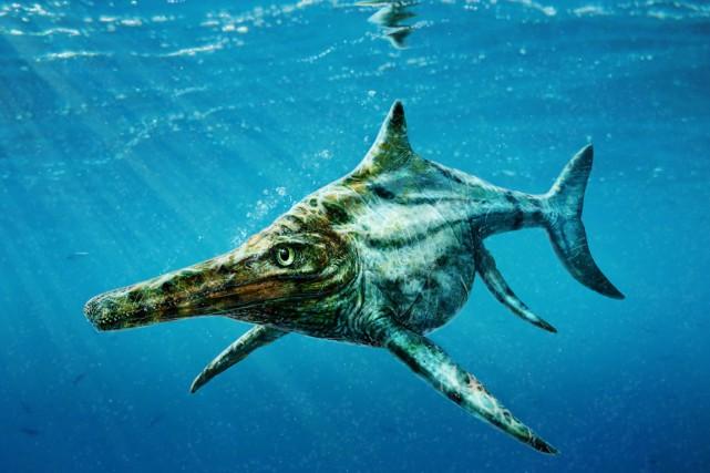 Les paléontologues ont longtemps cherché les raisons de... (ILLUSTRATION TODD MARSHALL, UNIVERSITÉ D'ÉDIMBOURG/REUTERS)