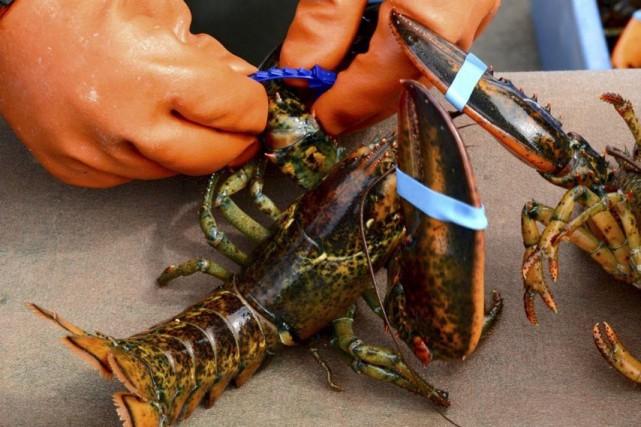 Le capitaine du homardier,Émilien Duclos, a été reconnu... (Collaboration spéciale Johanne Fournier)