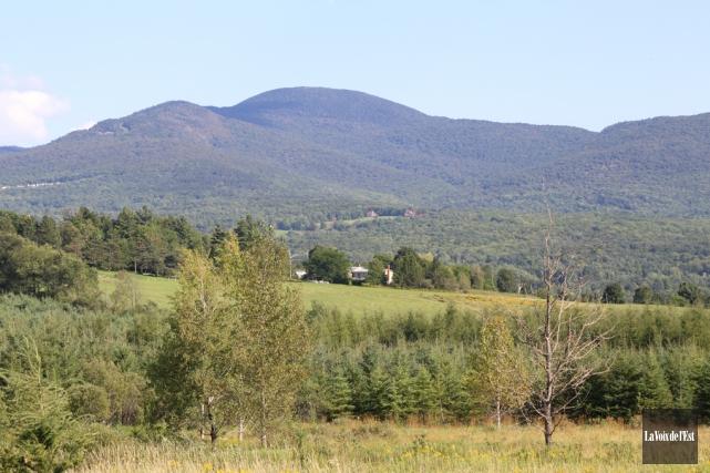 Avec la réduction des superficies de terrains, la... (Janick Marois, Archives La Voix de l'Est)