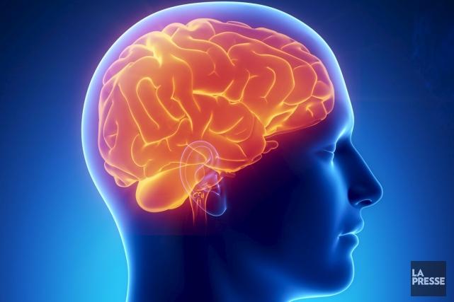 Les jeunes qui souffrent de lésions au cerveau, comme des commotions... (Photo Thinkstock)