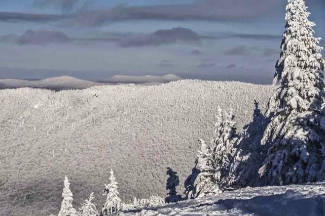 Il s'agit d'hectares en terrain montagneux à Sutton.... (Jocelyne Trudeau, fournie par CNC)