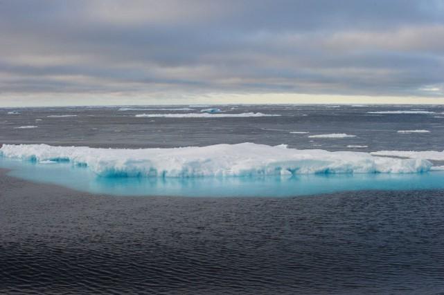Les chercheurs au sein de l'Agence océanographique et... (PHOTO CLÉMENT SABOURIN, ARCHIVES AGENCE FRANCE-PRESSE)