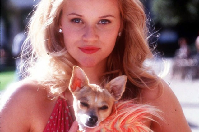 Reese Witherspoon dans le film Blonde et légale... (AP, Tracy Bennett)