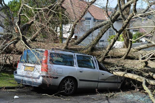 Un arbre s'est abattu sur cette voiture alors... (PHOTO GLYN KIRK, AFP)