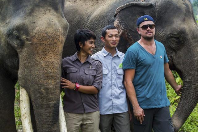 Leonardo DiCaprio (à droite) photographié avec des éléphants... (PHOTO AFP)
