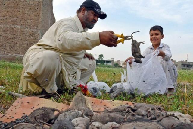 Les habitants de Peshawar se plaignent d'être importunés... (PHOTO ARCHIVES AFP)