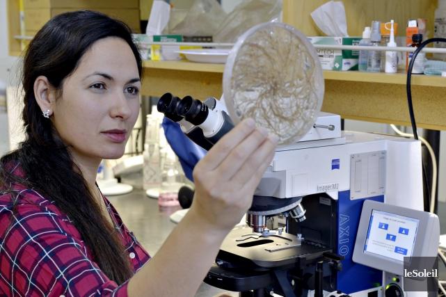 Salma Taktek, doctorante de l'Université Laval, s'est démarquée... (Photothèque Le Soleil, Pascal Ratthé)
