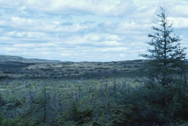 Les aires protégées devaient représenter 12% de la... (PHOTO THINKSTOCK)