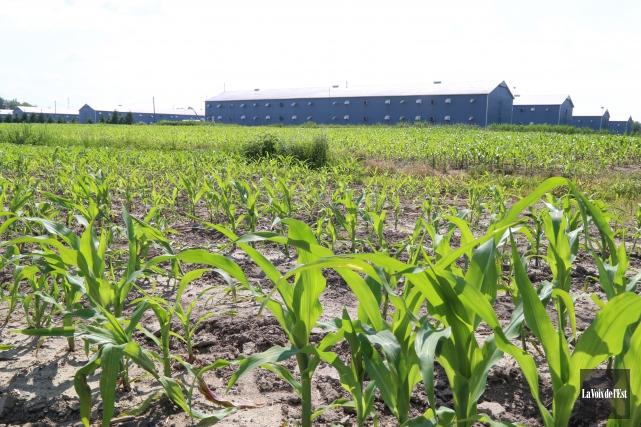 La valeur moyenne des terres agricoles a augmenté... (archives La Voix de l'Est)