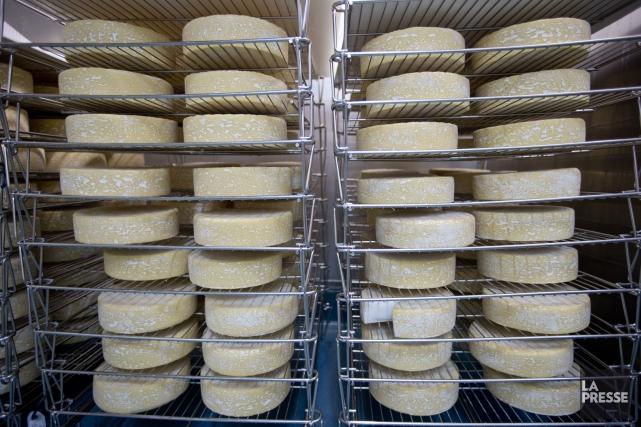 Deux fromageries estriennes figurent parmi les gagnants du... (Archives La Presse)