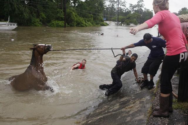 Des gens tentent de rescaper l'un des 70... (AP, Mark Mulligan)
