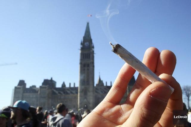 Avec la légalisation, la qualité de la marijuana... (Photo d'archives, Le Droit)