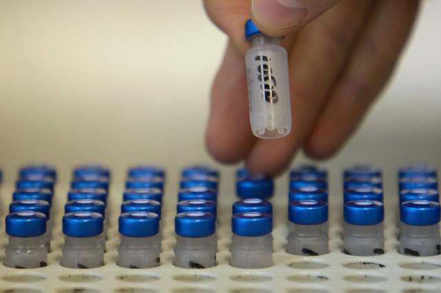 La Russie est le pays qui a enregistré le plus grand nombre de cas de dopage... (Photo archives AFP)