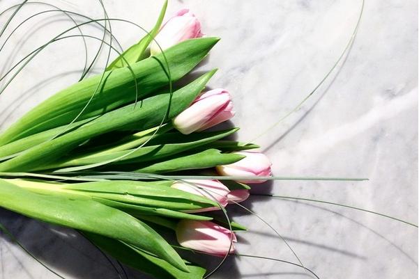 Prune les fleurs offre un atelier, le jeudi... (PHOTO TIRÉE DU COMPTE INSTAGRAM DE PRUNE LES FLEURS)