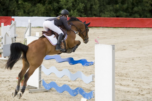 «Dans le mur». C'est là que se dirigent les Jeux équestres mondiaux, prévus en... (123RF)