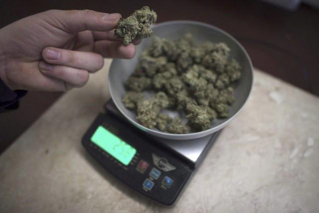 La charge de Vancouver contre les commerces non autorisés de vente de marijuana... (Photo La Presse Canadienne)