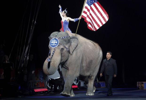 Les éléphants du cirqueRingling Bros. and Barnum and... (Archives AP, Bill Sikes)