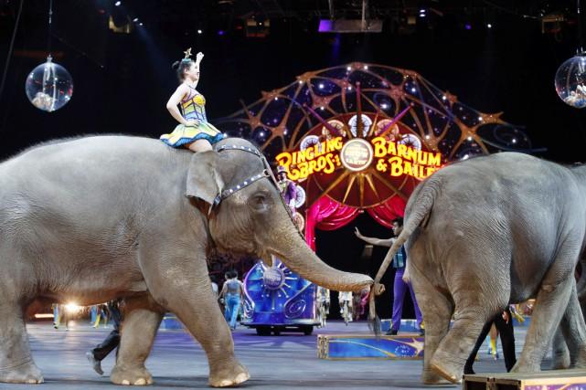 Traditionnellement, les éléphants duRingling Bros. and Barnum &... (PHOTO ALEX BRANDON, ACRHIVES AP)