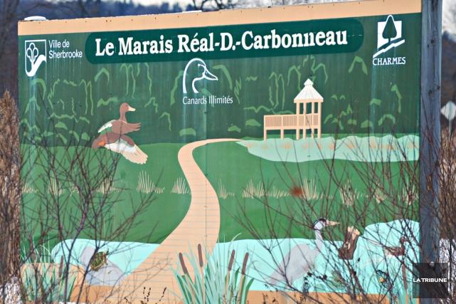 Une partie du sentier du marais Réal-D.-Carbonneau sera fermée pour une période... (Archives La Tribune)
