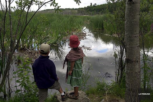 La mission première de ce magnifique marais est de favoriser la venue des... (Archives La Tribune)