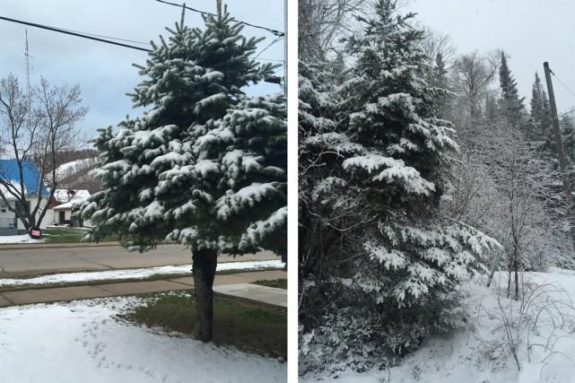 La neige s'invite pour la fête des Mères