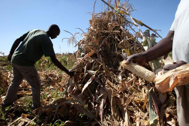 «Le Zimbabwe fait partie des pays les plus... (Photo Philimon Bulawayo, Reuters)