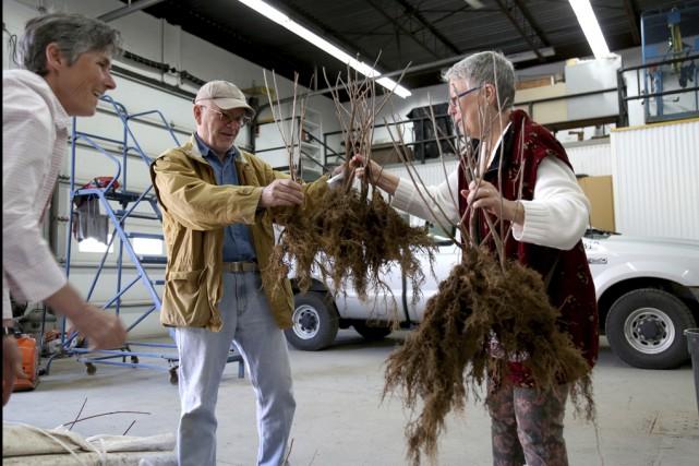 Environ 5000 arbustes ont été distribués à travers la MRC Brome-Missisquoi,... (Julie Catudal)
