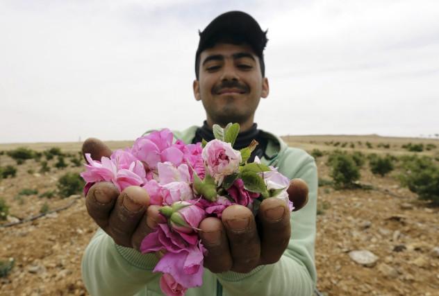 Grâce à son odeur à la fois riche... (AFP, Louai Beshara)