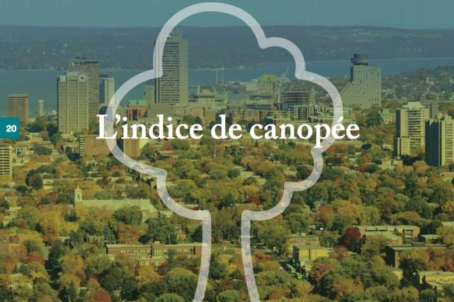 La Ville de Québec confirme qu'elle augmentera le couvert forestier sur son... (Tirée du document Place aux arbres)