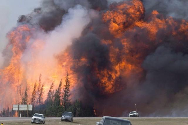 Un feu de forêt a rapidement pris de... (La Presse Canadienne)