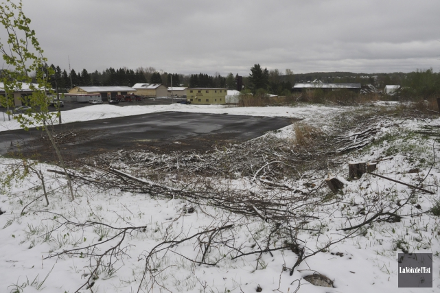Dernièrement, des arbres ont été abattus pour permettre... (Alain Dion, La Voix de l'Est)