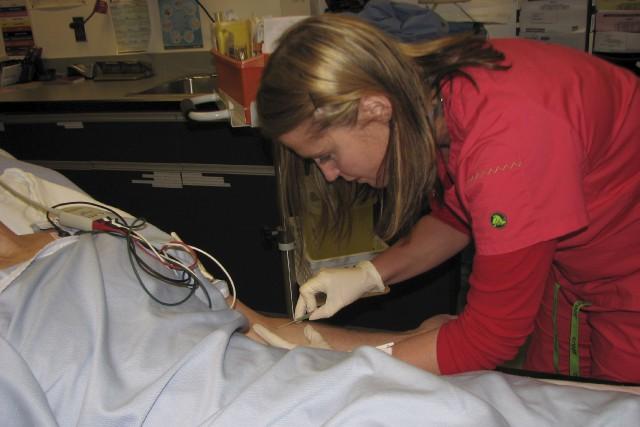 Mélinda St-Louis au travail... (Fournie par Mélinda St-Louis)
