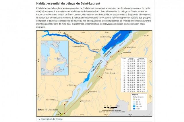La zone délimitée en rouge montre l'habitat essentiel... (Carte tirée du plan de rétablissement du béluga)