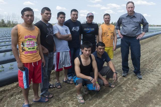 Parmi la dizaine d'employés du Guatemala embauchés à... (Spectre Média, Marie-Lou Béland)