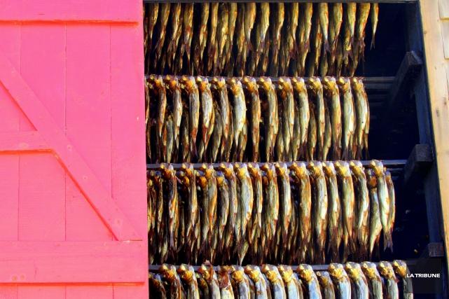 Les îles de la Madeleine riment avec fruits de mer. Mais on y trouve aussi... (La Tribune, Jonathan Custeau)