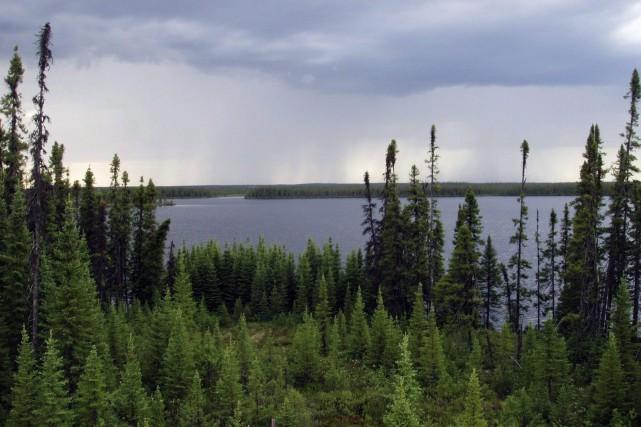«Les modèles climatiques et les modèles associés aux... (PHOTO ARCHIVES LA PRESSE CANADIENNE)