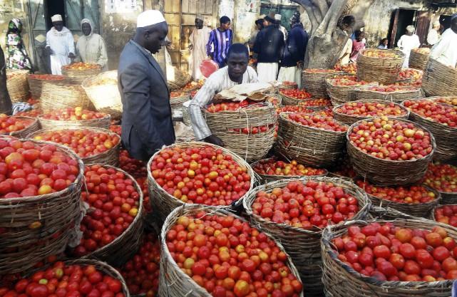 Dans l'État de Kano au Nigeria, 90 %... (AFP)