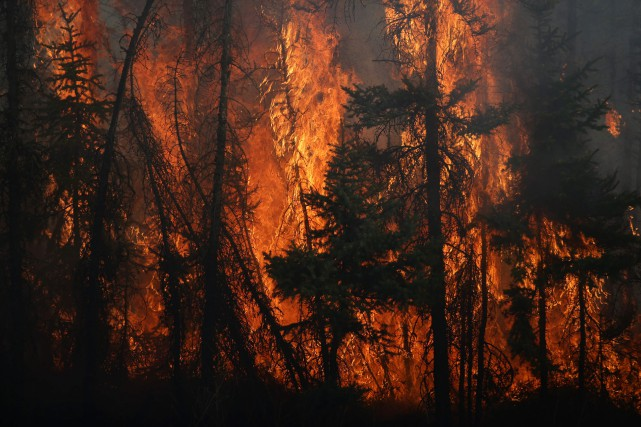 Les incendies de forêt qui ont forcé l'évacuation... (Archives AFP)