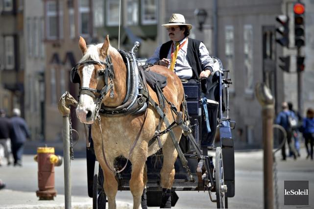 Le règlement sur les calèches dans le Vieux-Québec est «excellent» et le... (Photothèque Le Soleil)