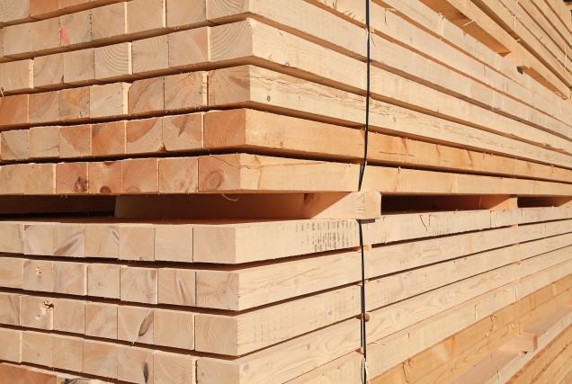 En raison de l'importance du secteur forestier dans... (123RF)